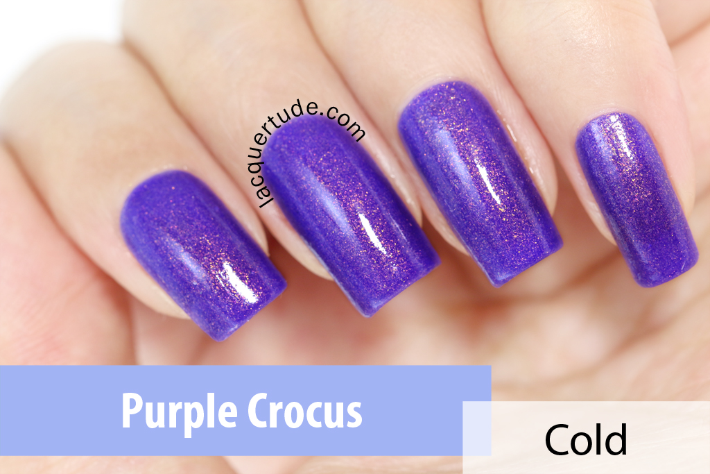 FUN-Lacquer-Purple-Crocus-Swatch1