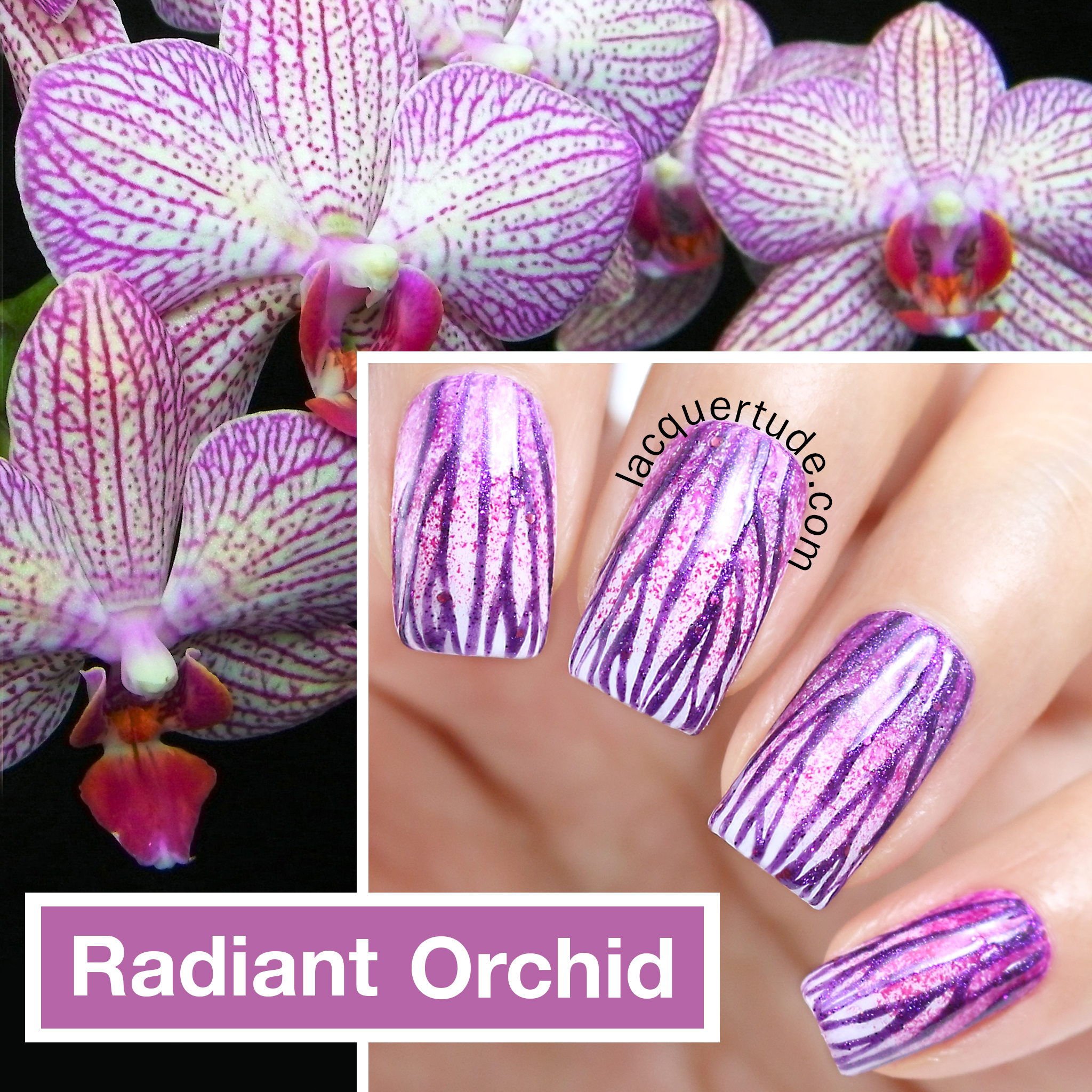 Lacquertude-Radiant-Orchid-Nail-Art-Collage